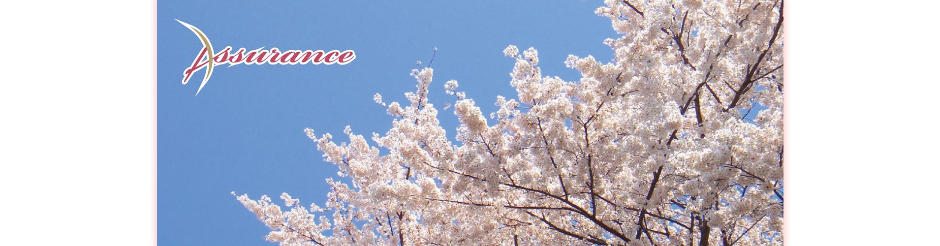 株式会社アシュランス:福島県の医療・看護師・福祉・介護求人